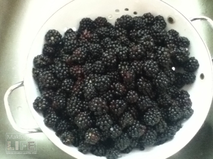 blackberries makingalife.me 8