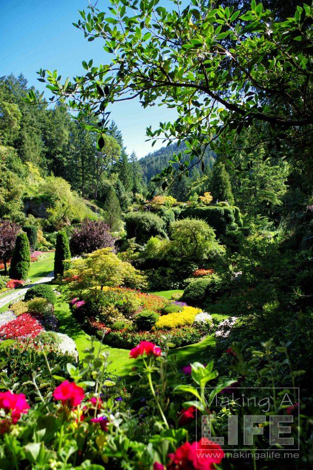 Butchart Gardens 2 Making A Life