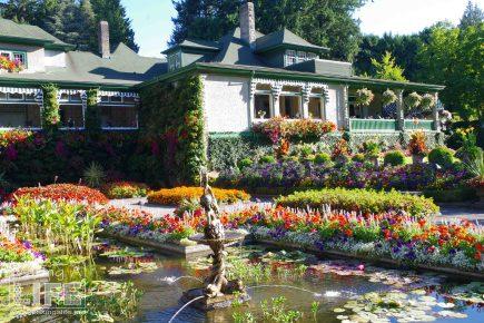 Butchart Gardens 43 Making A Life