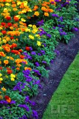 Butchart Gardens 75 Making A Life