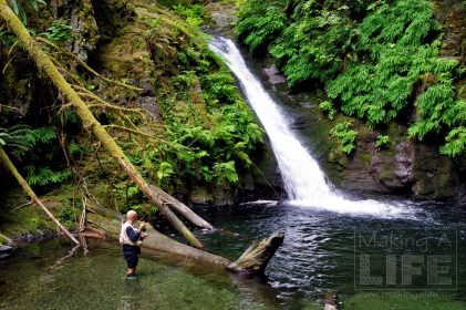 Fishing in the Goldstream