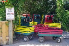 Wagons for Rent Safari Niagara