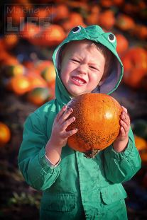 pumpkin-patch_making-a-life-4